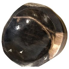Petrified Wood Bowl from Morocco