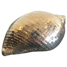 Vintage Silver Plated SeaShell