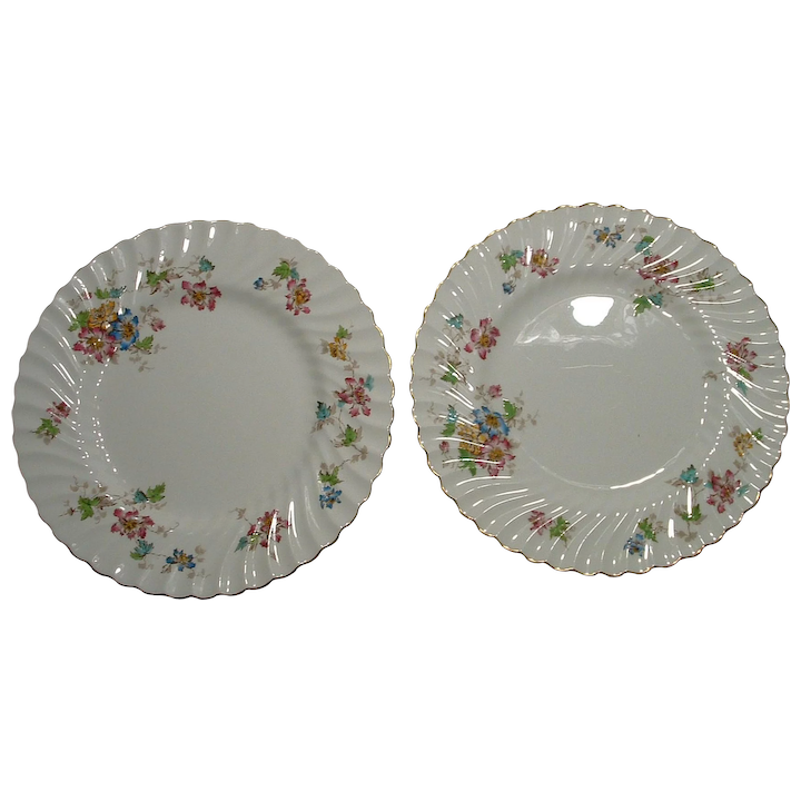 Bone China Dinner Plates In The Vermont