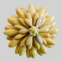 SANDOR Yellow Enamel Flower Brooch Pin