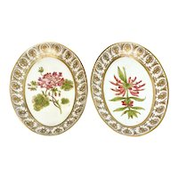 Pair Continental Hand Painted Porcelain Oval Botanical Floral Dishes, 19th Century
