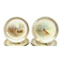 12 Royal Doulton Porcelain Hand Painted Bird Cabinet Plates, Signed Hancock
