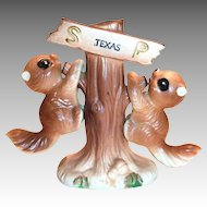 Texas Squirrels Hanging From A Tree Souvenir Salt & Pepper Shakers