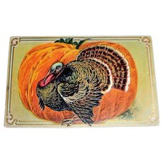 Vintage Thanksgiving Greetings Postcard (Turkey In Front Of Large Pumpkin)