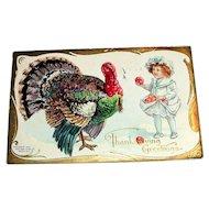 NAF Co.: Thanksgiving Greetings Postcard (Little Girl Feeding Apples To Turkey)