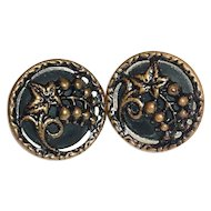 Two Grapes & Leaf On Stem Brass Design Buttons
