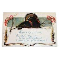 "Thanksgiving--""Hurrah For The Fun! Postcard"