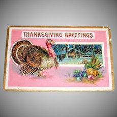 B&S: Thanksgiving Greetings Postcard - 1911