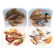 4 Royal Adderley Game Birds Bone China Butter Pat Plates