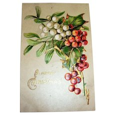 A Merry Christmas Postcard (Holly & Berries)
