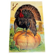 Thanksgiving Greetings Postcard - 1909