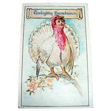 Thanksgiving Remembrances Postcard - Anthropomorphic Turkey Scene