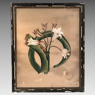 Antique framed large painting in watercolour gouache of botanical study of a plant flower orchid by EJ Legge dated 1877