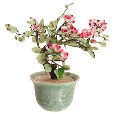 Vintage Jade Bonsai Tree in Celadon Ceramic Planter Signed