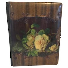 Victorian Celluloid Photo Album filled with fabulous Photos and a hair clipping