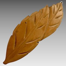 Large Bakelite Barrett, Carved Leaf, 1940's