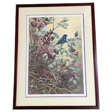 "Catherine McClung ""Elderberry Thicket"" Limited Edition Print Matted  Under glass Mahogany Frame  #110/450"