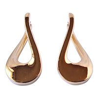 Large 14k gold Earrings