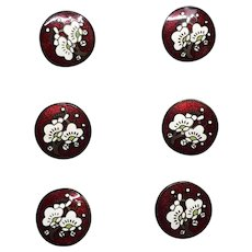 Buttons--Early 20th C. Fine Chinese Cloisonne Enamel Cherry Blossoms on Brass