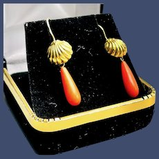 Vintage 14K Yellow Gold Salmon Coral Earrings