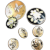 Seven Antique & Vintage Enamel Buttons of Various Sizes, Four Matching