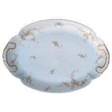"""Theodore Haviland Limoges France Porcelain 14"""" Platter"""