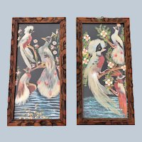 Vintage Mexican Feathercraft Framed Exotic Bird Picture Set