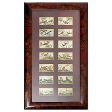 Antique Chinese Framed Pith Paper Bird Paintings, 19th Century