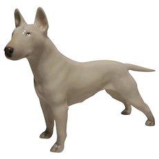 Royal Copenhagen Bull Terrier dog first quality