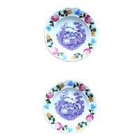 Pair of Antique  Staffordshire  Transfer an Hand Painted Plates