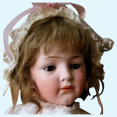 Very Elusive Hertel & Schwab and Co German Child Character Bisque Head Doll