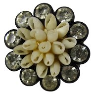 Tiny 1920s Celluloid Brooch With Rhinestones & Natural Shells