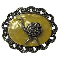 1950s Marbled Gold Lucite Ostrich Cameo Brooch