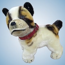 "Steiff mohair dog ""Bully"""