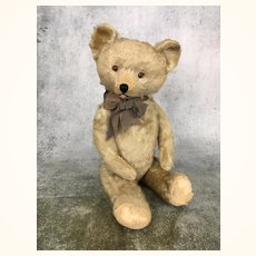 Old mohair American teddy bear