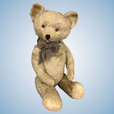 Old mohair teddy bear