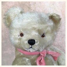 Vintage super cuddly long pile mohair white teddy bear