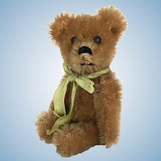Vintage Schuco miniature mohair teddy bear