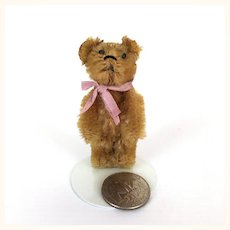 Miniature Schuco mohair Teddy Bear