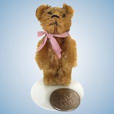 Miniature Schuco mohair Teddy Bear