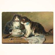 Raphael Tuck Series 105 Postcard Cats with Birthday greetings