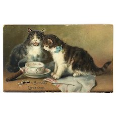 Raphael Tuck Series 105 Postcard Cats with Birthday greetings