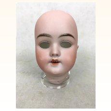 Antique Handwerck German bisque doll head, model 119