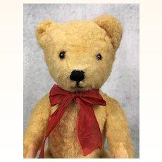 Vintage pale gold teddy bear