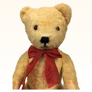 Vintage pale gold teddy bear