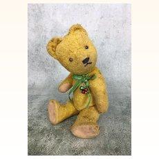 Vintage well-loved Gokra teddy bear