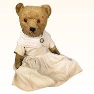 Vintage Chiltern Hugmee Teddy Bear