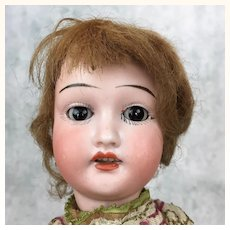 Antique Bisque head doll with wood body, so pretty!