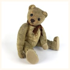 Antique mohair teddy bear with shoe button eyes