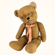 Teddy bear, large, short velveteen gold fur